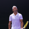 2009 Wimbledon Draw Is Out: Regrettably So Is Nadal