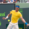 Electrifying Men Semis: Nadal vs. Roddick and Berdych vs. Soderling