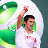 Djokovic Squelches Istomin, Del Potro Resists to Reach 3rd Round