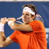 Del Potro Punches His Ticket into the Delray Beach Final