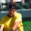 Del Potro Sacks Soderling, Djokovic Easily Wins at the Sony Ericsson Open