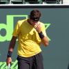 Del Potro Falls to Fish at the Sony Ericsson Open