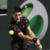 Cant Stop Him: Djokovic into Fourth Successive Final