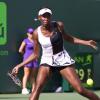 Former Miami Open Champions Venus and Azarenka Star Attraction on Thursday