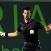 Djokovic Lands Another Final Berth at the Sony Ericsson Open
