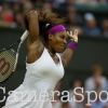 Serena Williams Toasts of The Championships with a Fifth Title