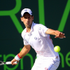 Novak Djokovic Seeks Fourth Sony Open Title