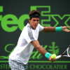 Del Potro Upset, Djokovic Advances at Sony Open