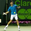 Federer and Del Potro Both Out, Djokovic and Ferrer Advance in Miami