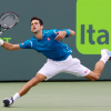 Djokovic Gets Past Goffin, Joined by Nishikori in Miami Open Final