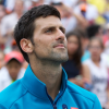 Djokovic Vanquishes Del Potro for Third U.S. Open Crown