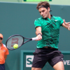 2019 Miami Open Player Field Announced